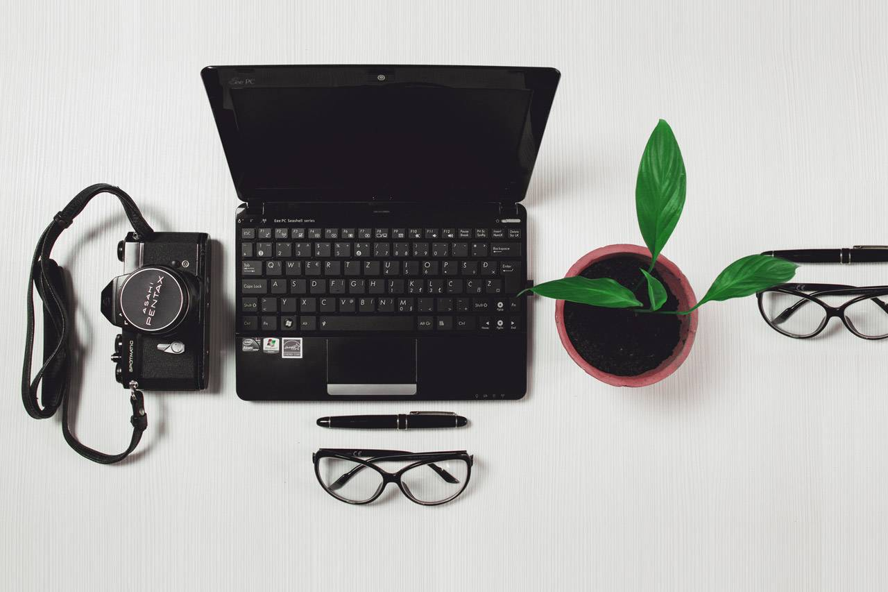 laptop-camera-plant-lenses