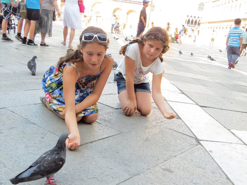 girls feeding pigeon